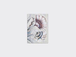 sb4-47_coralgrace_artcard